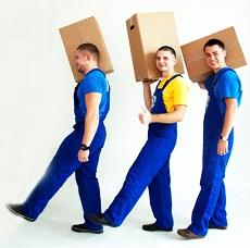 купить картонные коробки - Украинский Богатырь
